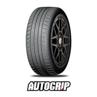 225/50R16 AUTOGRIP P308PLUS 96W XL