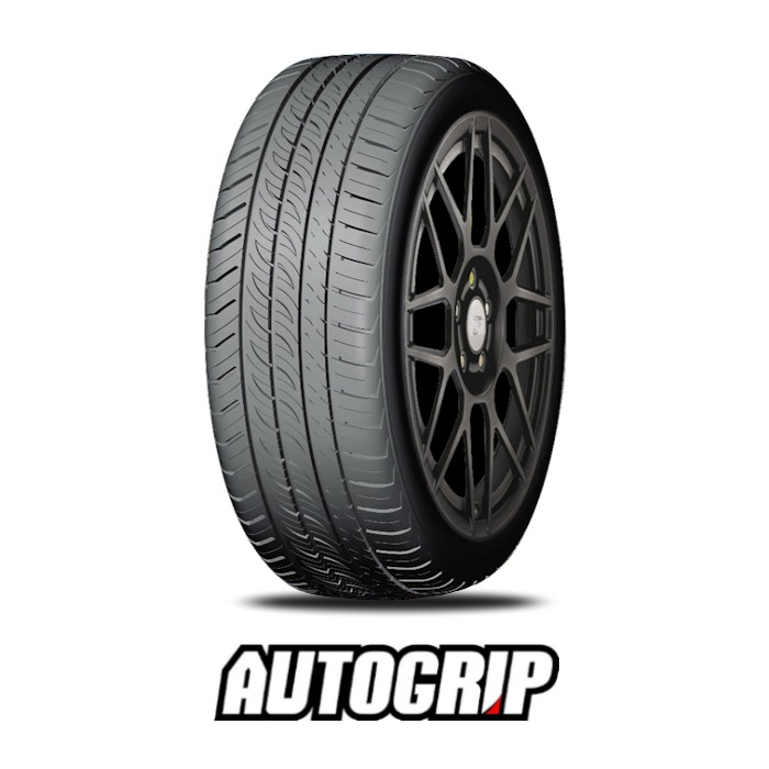 265/30R19 AUTOGRIP P308PLUS 93W XL